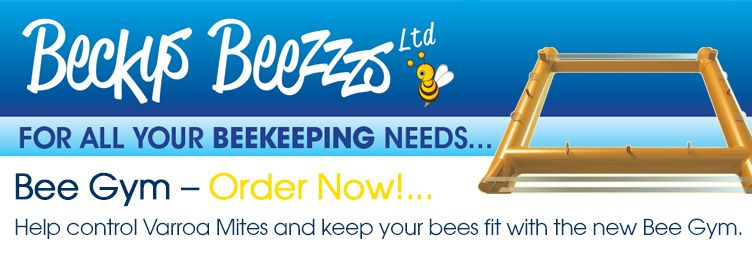 Bee Gym Order Now